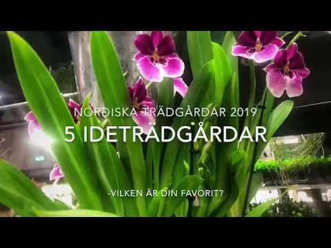 5 Ideträdgårdar på Nordiska Trädgårdar 2019