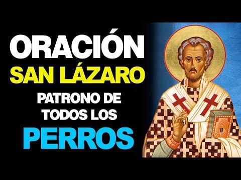 🙏 Oración Poderosa a San Lázaro Patrono de TODOS LOS PERROS 🐶