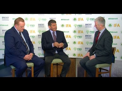 Cormac Healy and Andrew Doyle at IFA Brexit event