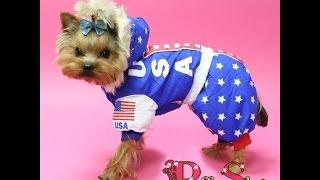 Комбинезон для собак Premium USA(Яркий зимний комбинезон для собачек! Модельки для мальчиков и для девочек! Очень тёплый и практичный! Вашем..., 2014-10-12T09:45:16.000Z)