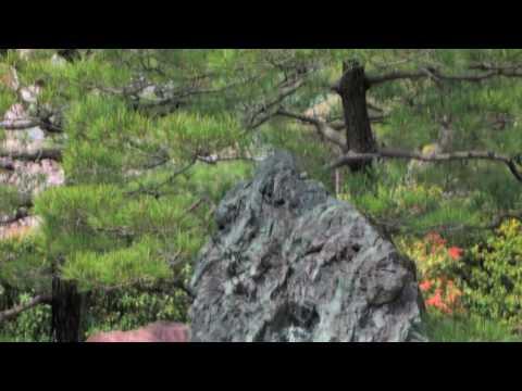 城南宮の石庭 枯山水 京都 Jonangu Karesansui Rock Garden in Kyoto