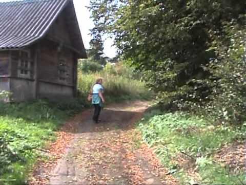Поход в заброшенную деревню. Псковская область