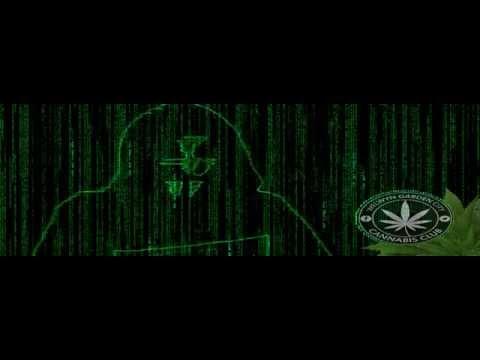 We are Welwyn Garden City Cannabis Club