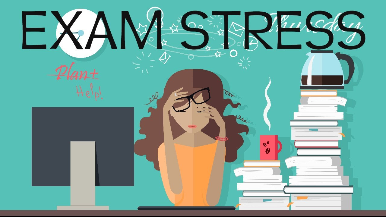 Image result for exam stress