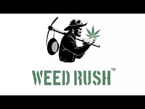 Weed Rush - video informativo Cannabis Sativa (Cannabis Legale) in Italia