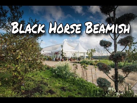 Black Horse beamish Wedding Marque Venue Open Day 360 Video VR Virtual Reality