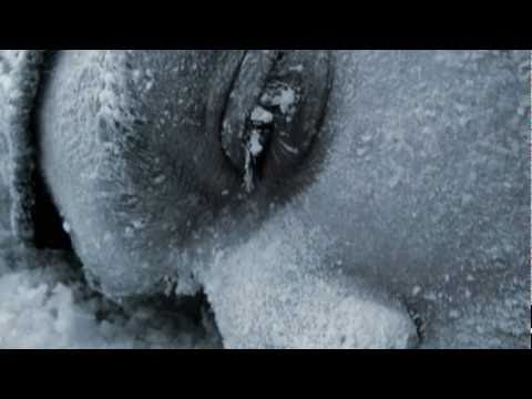 A.D. - 7 Weird Things Your Body Does in Freezing Cold Weather