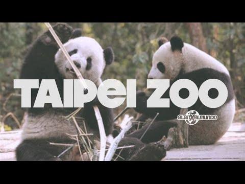 Taipei Zoo | Taiwán #10