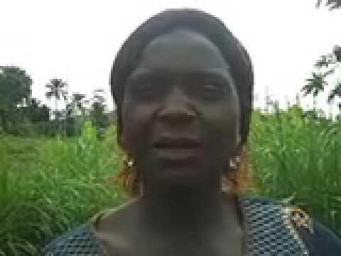 Elizabeth Acha - Journal Update