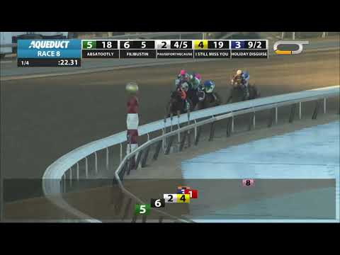 Holiday Disguise - 2019 - The Broadway Stakes