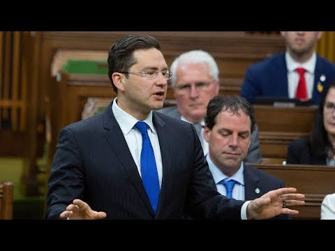 Question Period: Carbon tax and gas prices, tax evasion — June 7, 2019