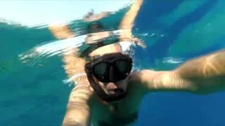 Коралловый риф Эйлат