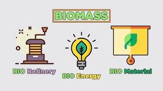 STEAM | Bio-Based Materials for Circular economy