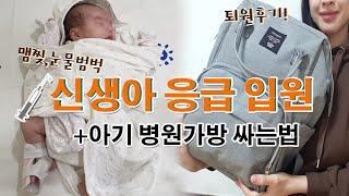 쌍둥이임신 쌍둥이육아브이로그 산부인과검진I신생아열날때 …