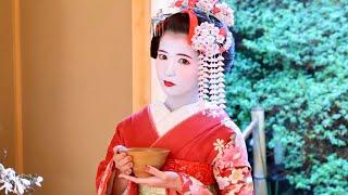 チャンネル登録&グッドボタンよろしくお願いします!!】 撮影協力:「舞妓変身スタジオ四季」 http://www.maiko-henshin.com/ 「レンタル着物四季さくら」 ...