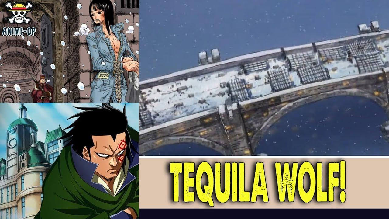 Tequila Wolf One Piece