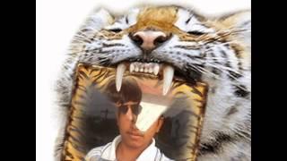 akluj shivaji nagar only frinds