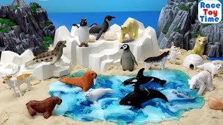 Toy Sea Animals and Wild Polar Animal Figures For Kids