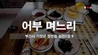 찡튜브 : 기장 임랑 맛집 어부며느리