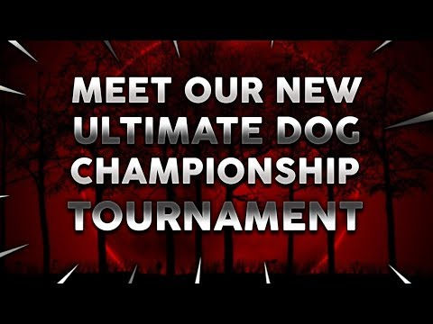 WELCOME TO THE NEXT ULTIMATE DOG CHAMPIONSHIP TOURNAMENT