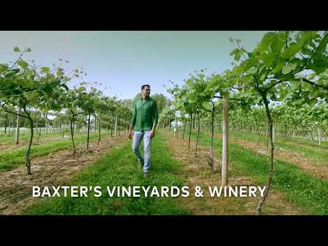 Illinois Great River Road Trip – Outdoor Beauty and Vineyards in Nauvoo
