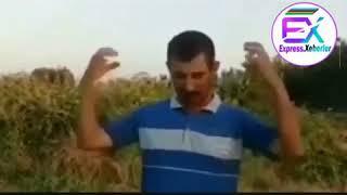 Whatsapp ucun gulmeli qisa videolar