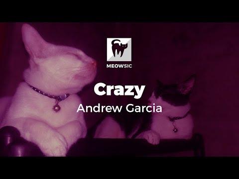 Crazy - Andrew Garcia (Lyrics)