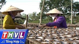 THVL | Người đưa tin 24G: Khô cá bổi Cà Mau hối hả vào vụ tết