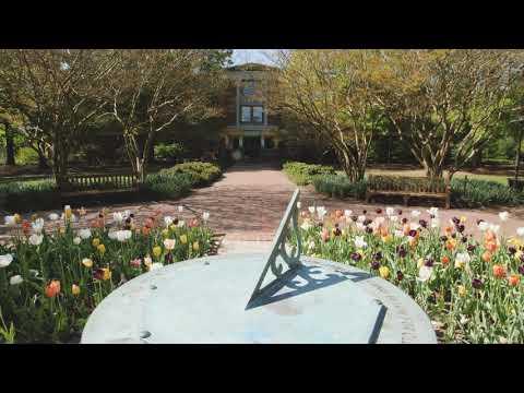 Serene Campus Scene: Sundial