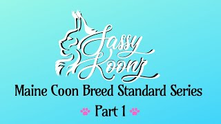 Maine Coon Breed Standard Series Part 1 Sassy Koonz Maine Coon Cattery