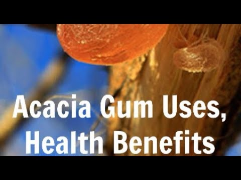 Acacia Powder Supports Weight Loss, Reduces Gut Inflammation and Lowers Cholesterol Gum Arabic