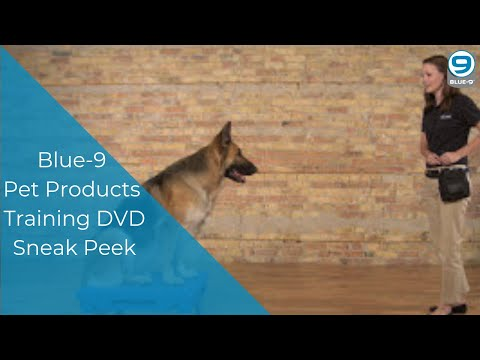 Blue-9 Pet Products