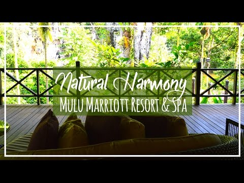 Borneo | Mulu Marriott Resort & Spa in Sarawak at Mulu Park | Malaysia Luxury Travel Blog