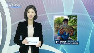 피싱스테이션 민물조황 1월9일
