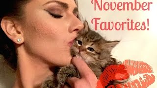 KITTENS! Ocean Skincare, Watermelon Scented Makeup +More! November 2015 Favorites! Cassandra Bankson