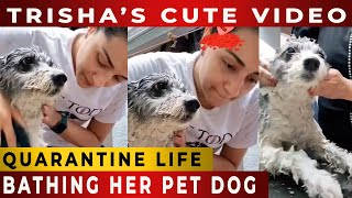 SO CUTE; Actress Trisha Bathing Her Little Dog With Love & Care – Love For Dogs