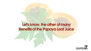 Top 5 Health Benefits of Papaya Leaves for Skin, Hair & Health