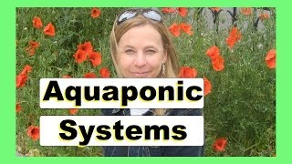 Aquaponic BioFilter 2 - Homemade BioFilter For Aquaponic Systems