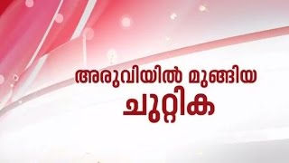 Aruviyil Mungiya Chuttika - Ajanda 06/07/15 Full Episode