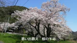 谷口修三 - 桜~愛しい人へ~