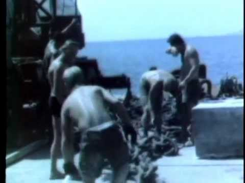 Staff Film Report 66-39A (1966)
