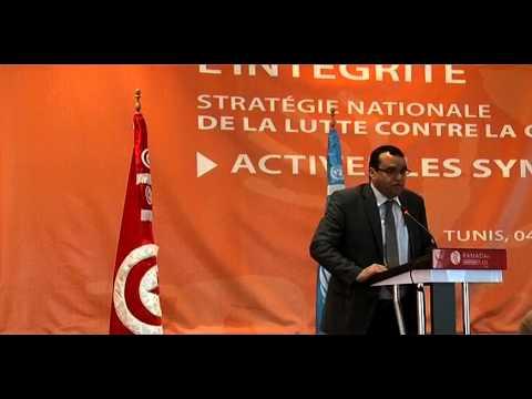 Restitutions des travaux des panels & Présentation du projet de la Stratégie Nationale