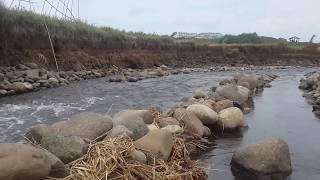 LANGKA MENANGKAP IMPUN  LAUT CARA JEBAKAN | Traditional fishing