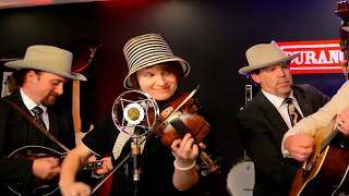 Fried Taters and Onions - By Carolina Blue - Live Bluegrass Music