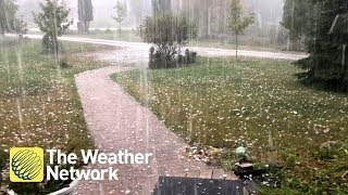A downpour of intense hail from tornado-warned storm in Dunrobin, Ontario