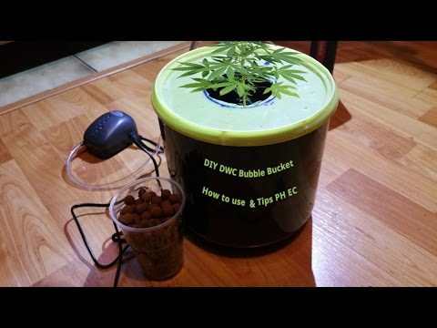DWC DIY bubble bucket Tips PH EC & How to use for Grow