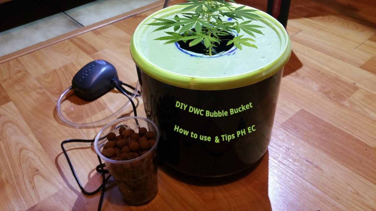 Dwc Diy Bubble Bucket Tips Ph Ec Amp How To Use For Grow
