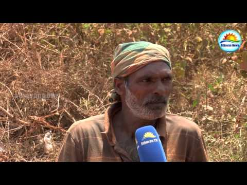 Jaffna - Illegal Lime stone smuggling