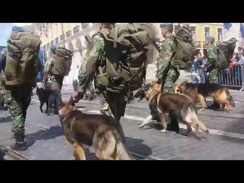 20160610 10 de junho 2016 - Dia de Portugal - tropas especiais