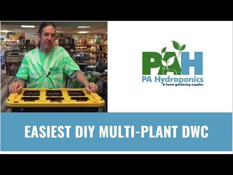 Easiest Multi-Plant DIY Deep Water Culture (DWC) Bin-Tote